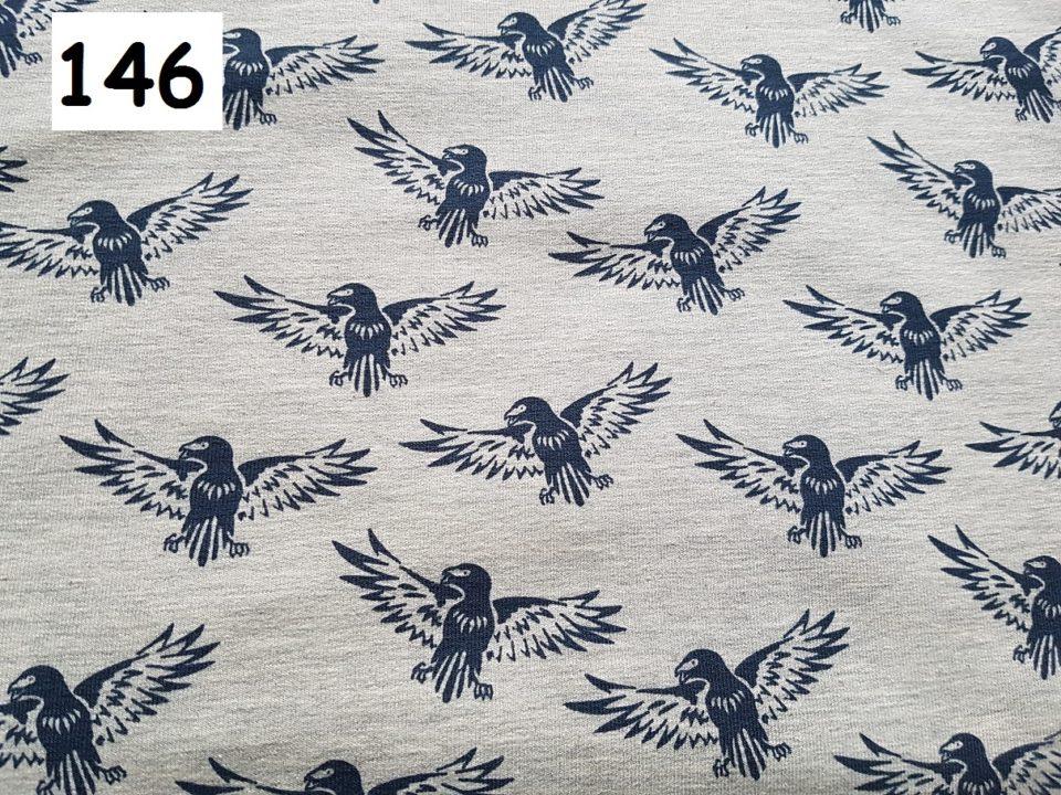 146 - orli