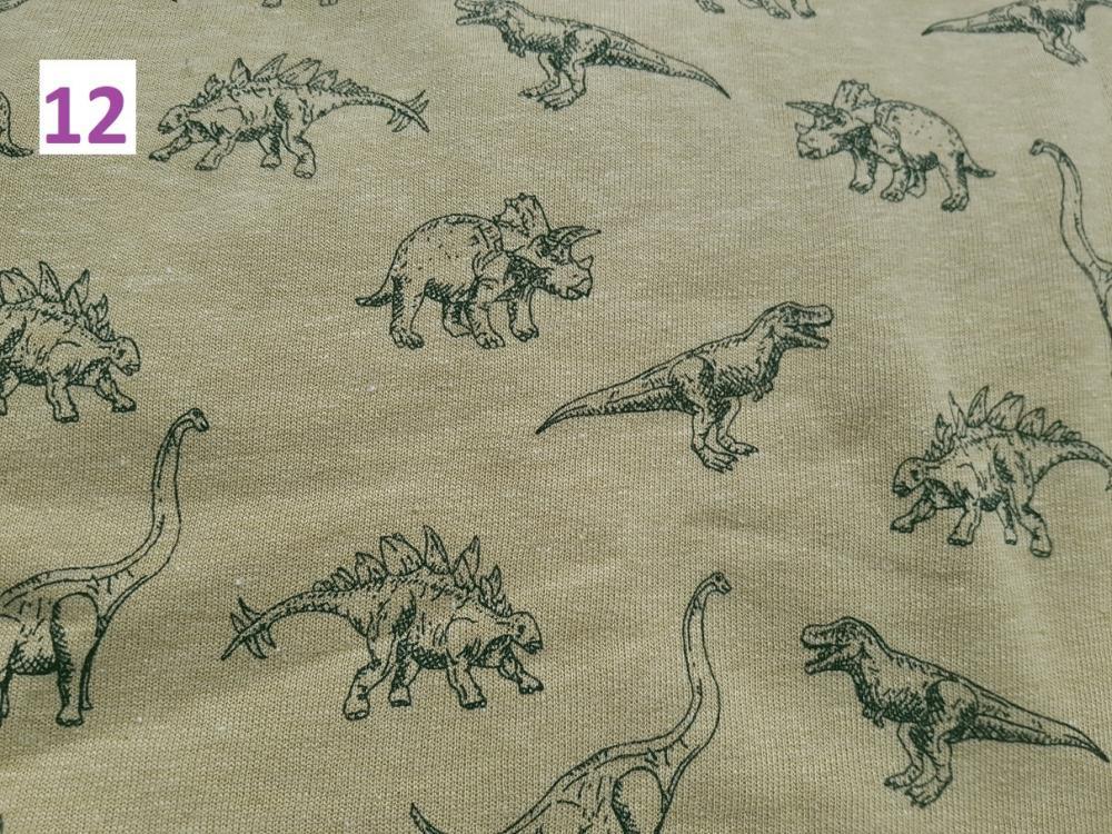 12 - dinosauři