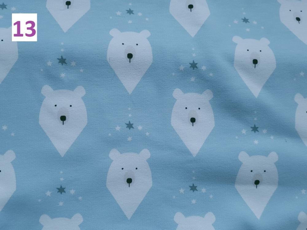 13 - lední medvědi